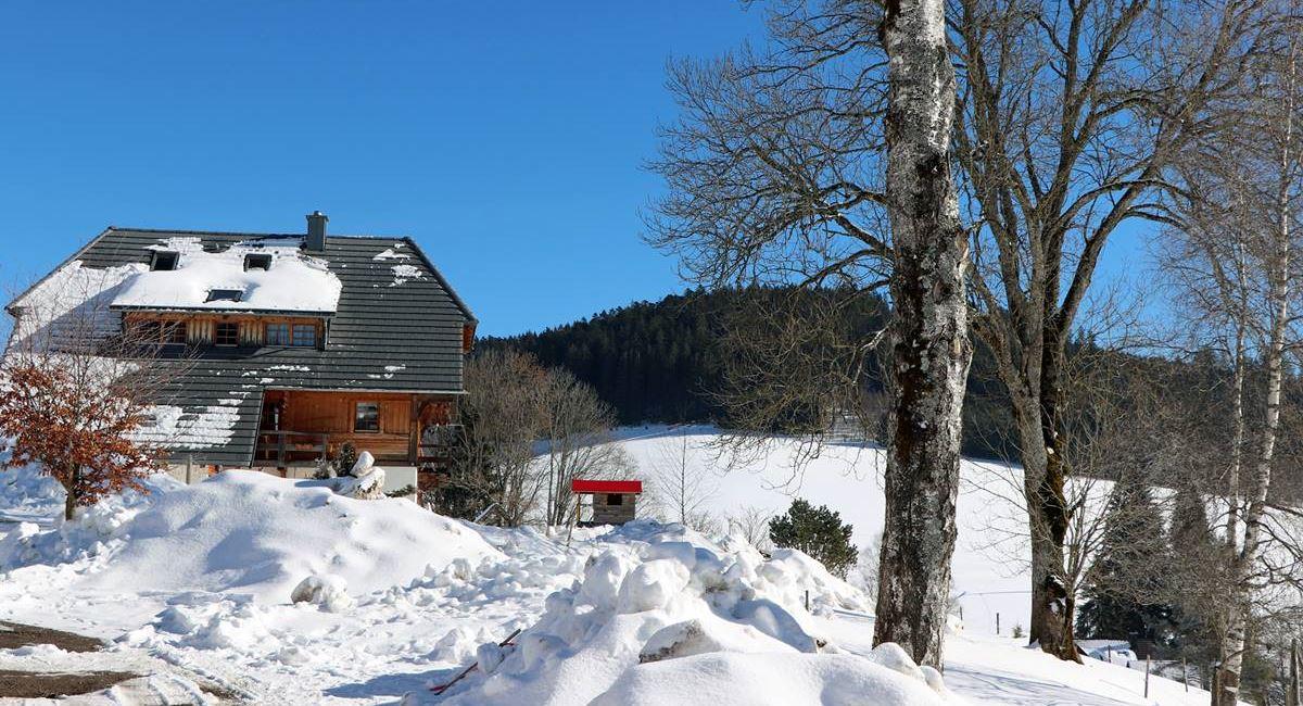 balzenhof-ferienhaus-im-winter-kl-fotobox